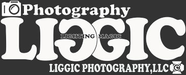 LIGGIC PHOTOGRAPHY,Los Angeles,Photographer SHIN
